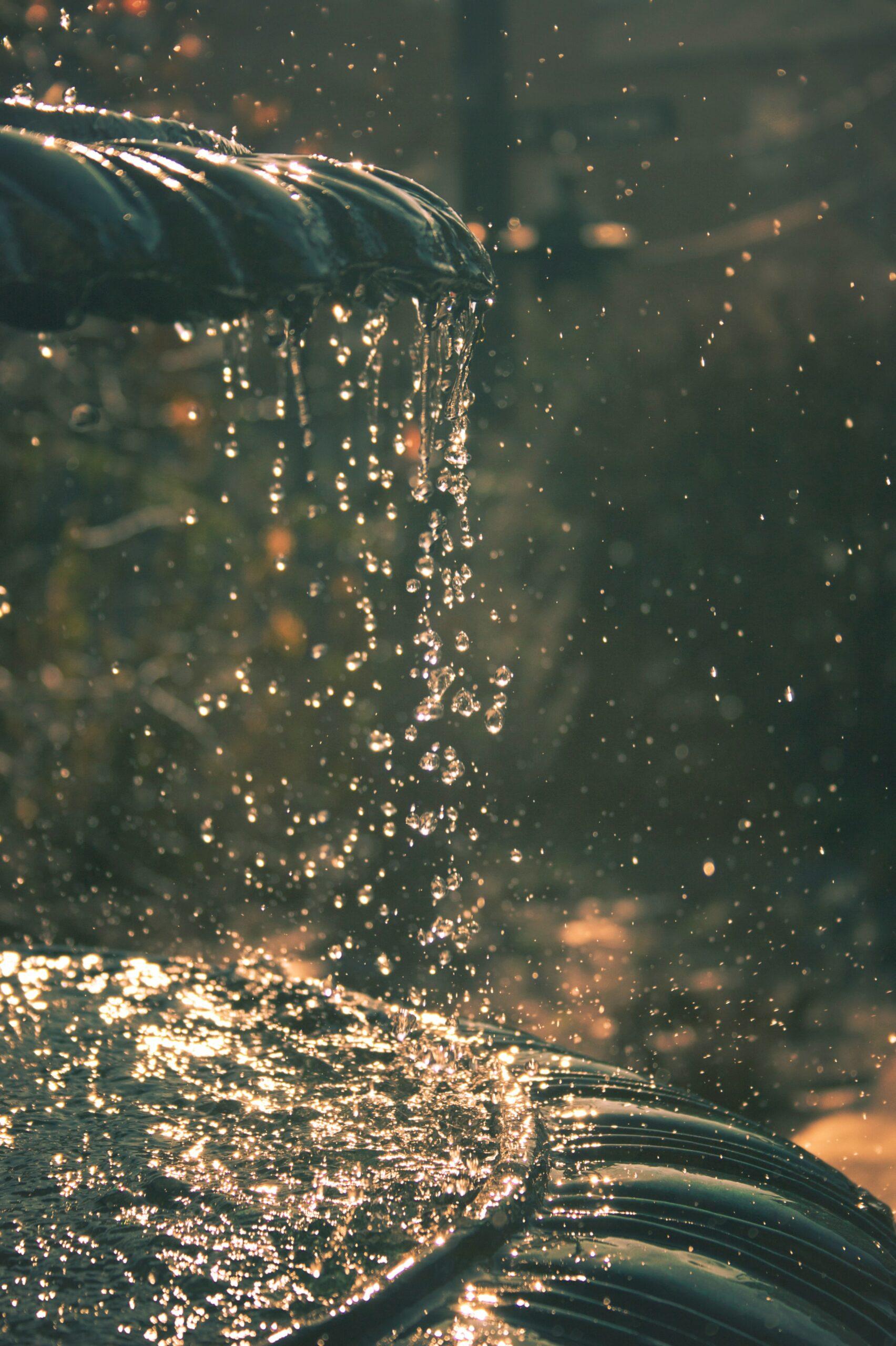 fuente agua viva
